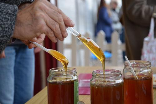 Greek-Honey-Tasting-2