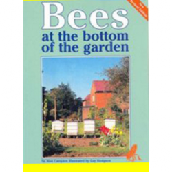 Bees-at-bottom-garden