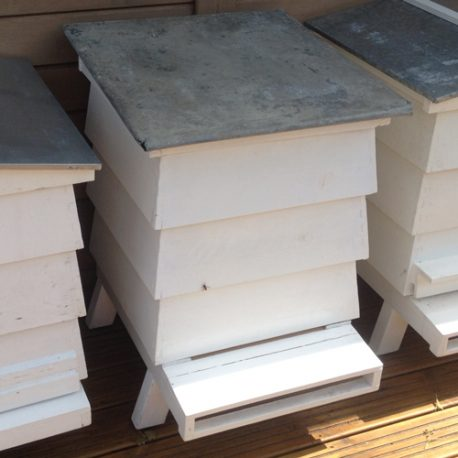 Pitched-Hive-1