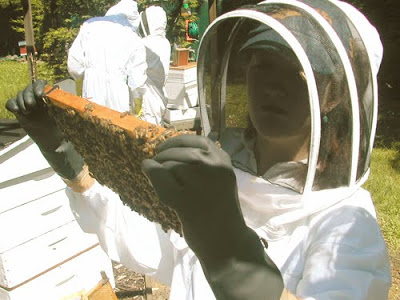 Beekeeping Course was a Great Weekend!!