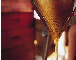 """Rosh HaShanah-Jewish New Year """"simmon"""" with honey"""
