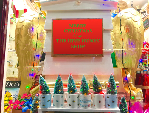 Shop-Xmas-window-Web
