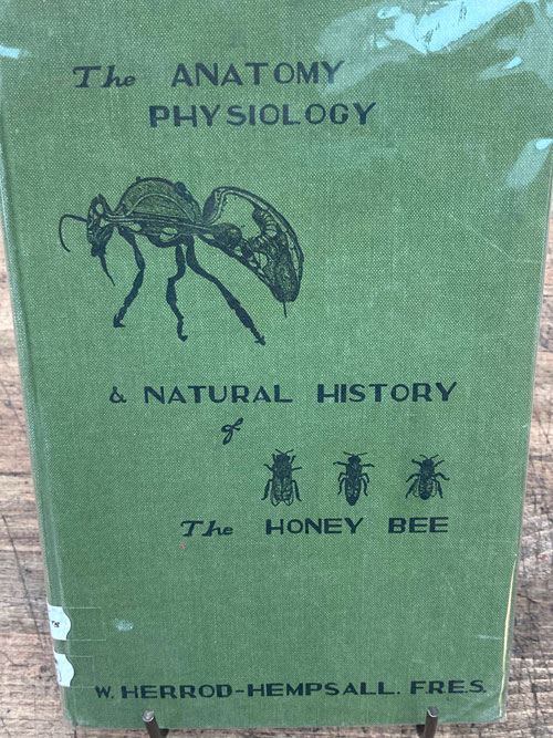 The Anatomy, Physiology and Natural History of the Honey Bee-British 1943